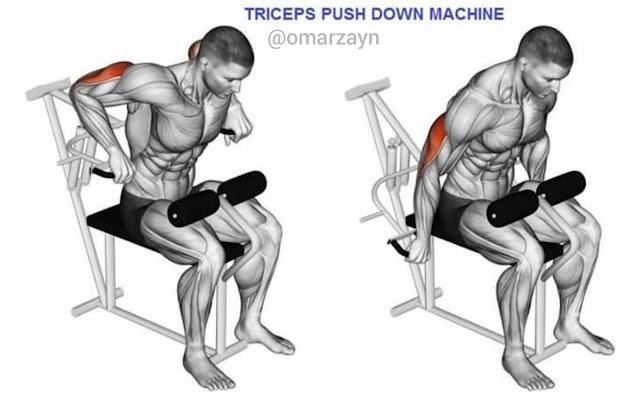 triceps push down machine workout