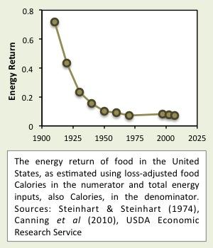 Energie return bij voedselproductie