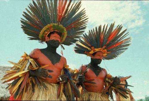 Povos Indígenas E Diversidade Cultural
