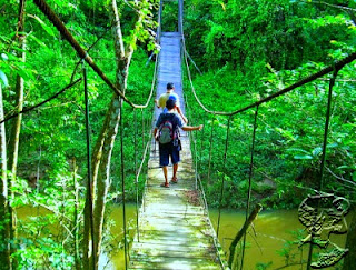 East Borneo, The Beauty In The Jungle