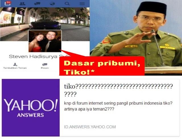 """Biadab! Ini 11 Definisi Istilah """"Tiko"""" di Yahoo Answers"""