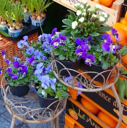 fiori e cestini