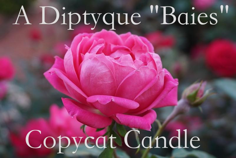 A Diptyque Baies Copycat Candle