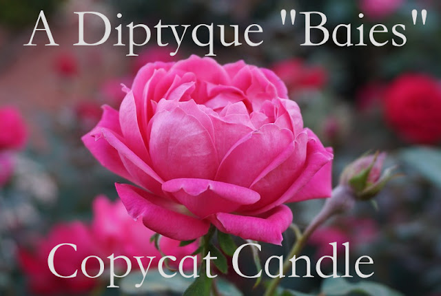 A Diptyque Baies Copycat Candle