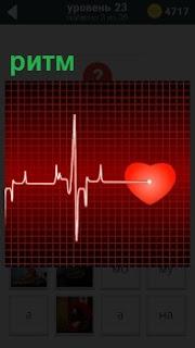 На экране медицинского прибора показан ритм работы органов человека, а именно сердца