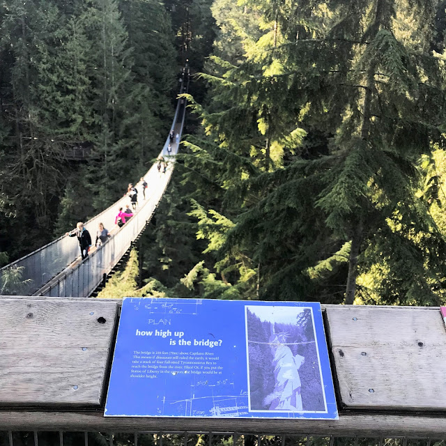 Capilano Suspension Bridge, Vancouver BC, Where To explore nature in BC