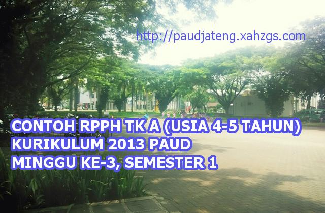 Contoh RPPH TK A Semester 1 Minggu 3 Kurikulum 2013