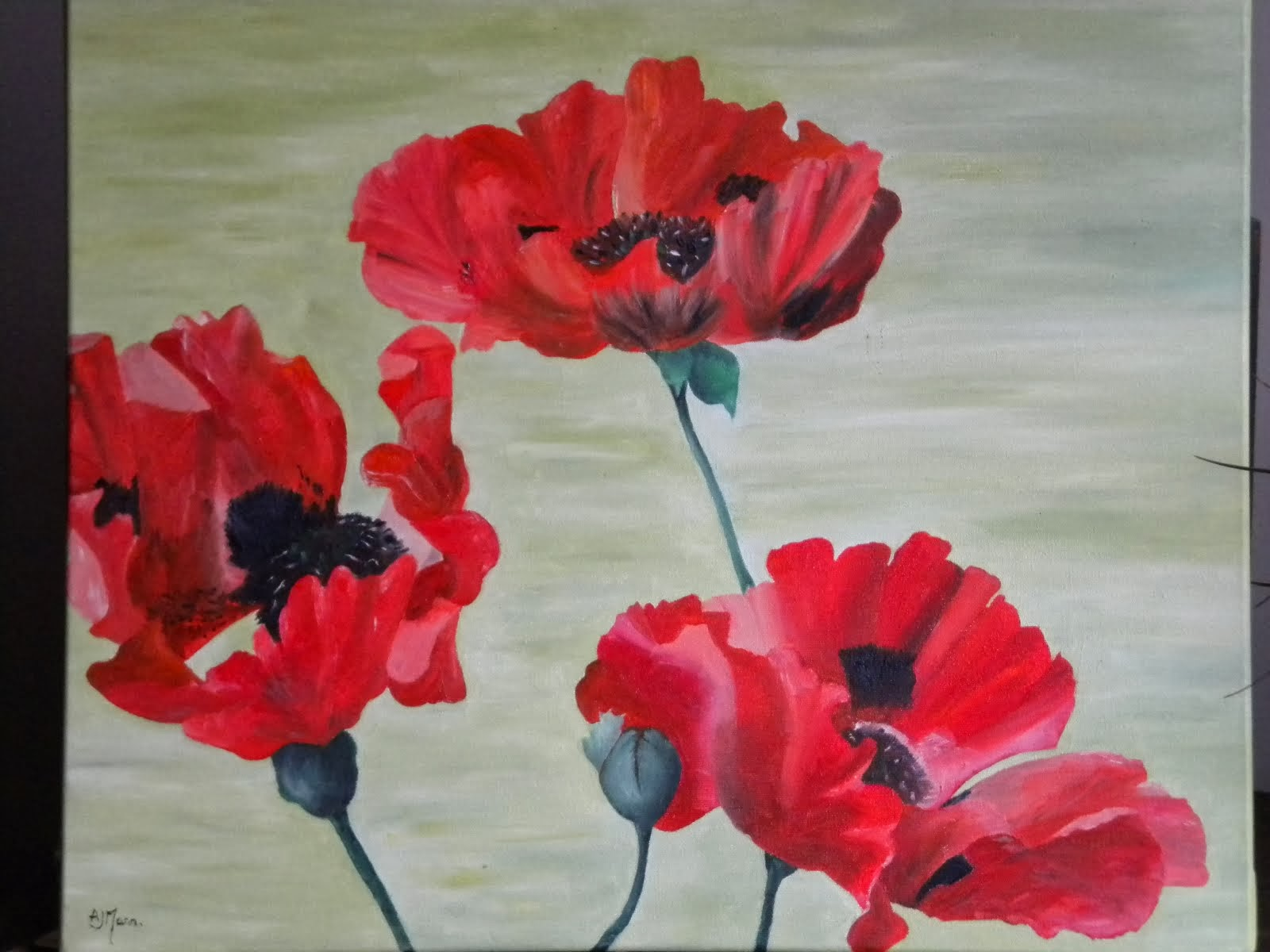 Poppies by Alison Mann