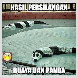 meme lucu buaya dan panda