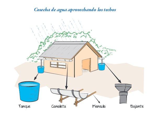 Cosechar agua de lluvia para regar aprovechando los tejados