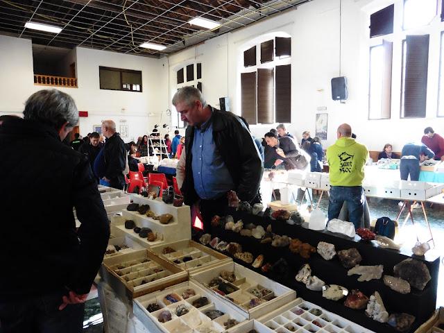 XXII Mesa de Minerales Monteluz. 10 de diciembre de 2016. El Padul P1040004