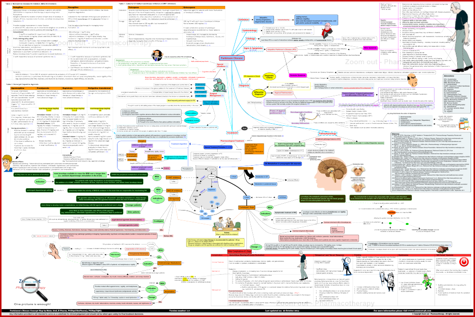 Parkinson Disease Concept Map Parkinson Disease