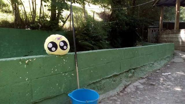 Mini-Fu preparado para pescar en el Molino del Alba