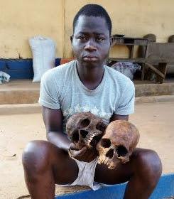 cemetery worker human skulls