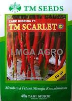Benih Cabe Besar,Cabe F1 TM Scarlet,bibit cabe hibrida unggulan,Tani Murni,LMGA AGRO