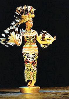 Tarian Daerah Kaltim : tarian, daerah, kaltim, Burung, Enggang, Kalimantan, Timur, Gambar