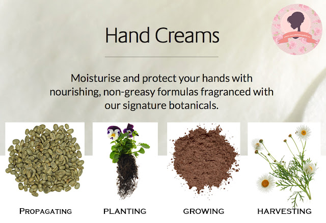 Jurlique-hand-cream