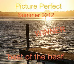 Best Of The Best Summer 2012