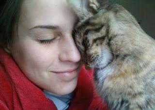 kucing Mengusap atau menyerudukkan kepalanya ke tubuh kita