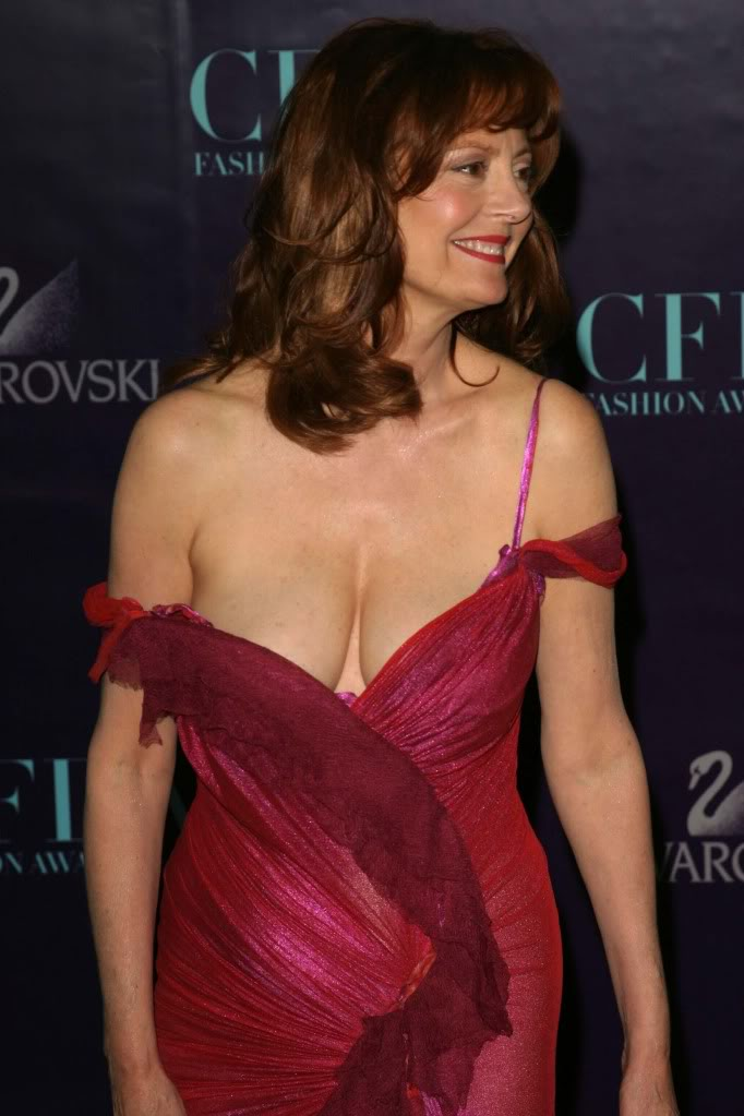 nude Hot Susan Sarandon (65 photo) Cleavage, Twitter, butt