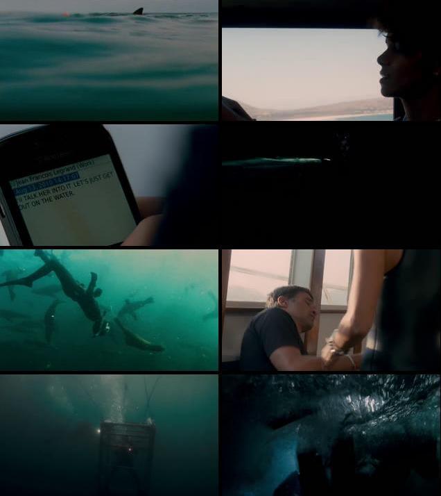 Dark Tide 2012 Dual Audio Hindi 720p BluRay