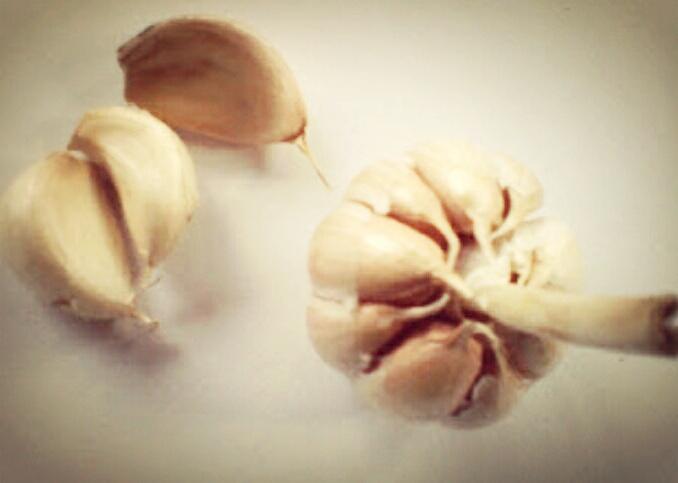 khasiat bawang putih dan kandungan kimia didalamnya