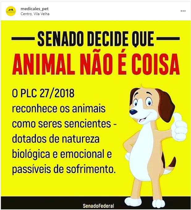 animal não é coisa: Senado decide...