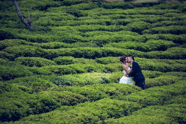 những nơi chụp hình cưới đẹp ở đà lạt