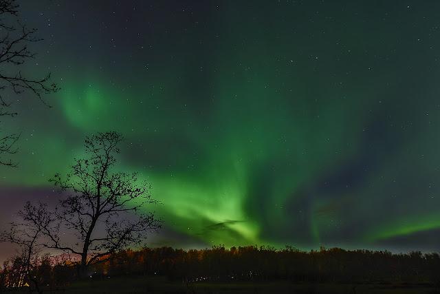 Aurora Boreal sobre Tromsøya, Noruega, por Mónika