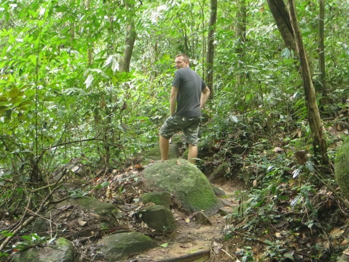 Парень в джунглях