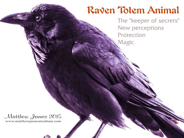 Raven Totem Meaning
