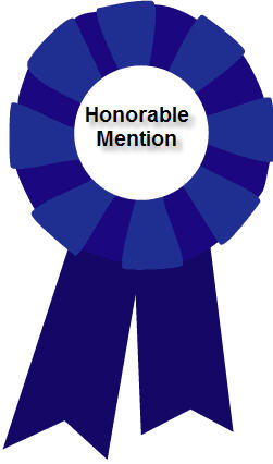 Lot of 25 HONORABLE MENTION AWARD RIBBONS String & Card   eBay   Honorable Mention Trophy