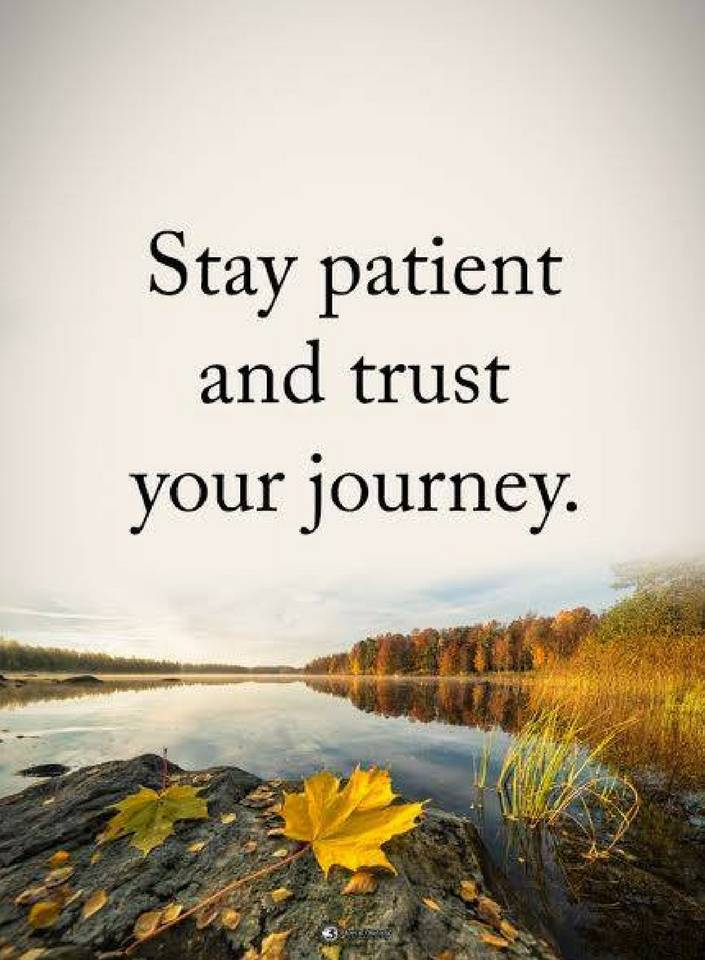 Stay Patient And Trust Your Journey Quotes Magnificent Quotes Journey