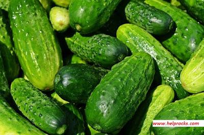 Cucumber - कुकुम्बर खीरा, ककड़ी
