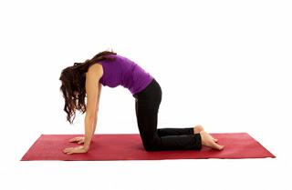 Imagen de 5 Estiramiento sencillos para Fortalecer la Espalda y/o reducir el dolor 24