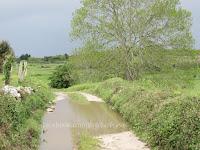 Cuerres camino de Santiago Norte Sjeverni put sv. Jakov slike psihoputologija