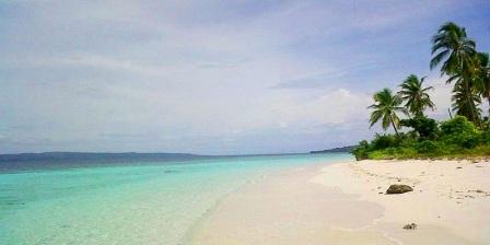 Kekayaan Alam Bawah Laut Pantai Liwutongkidi Menjadi Daya Tarik Tersendiri Bagi Wisatawan Saat Mengunjungi Tempat Ini