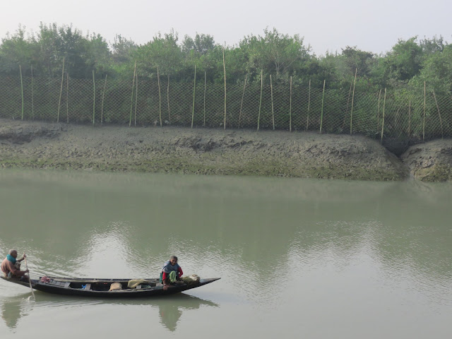 Samshernagar Sundarban tourism and home stay