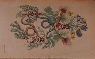 The snake emblem turned sideways.