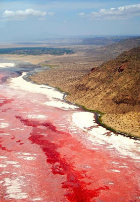 tanzania lake natron beautiful lake