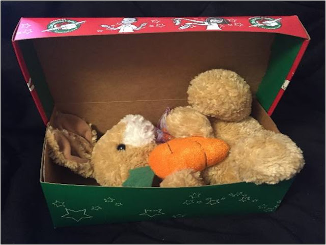 Bunny in an Operation Christmas Child shoebox.