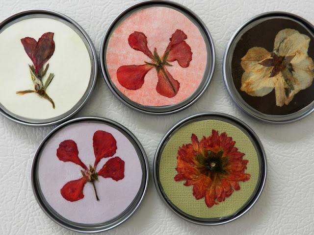 pressed flower magnets