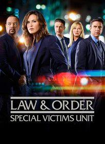 Assistir Law And Order SVU 20x20 Online (Dublado e Legendado)