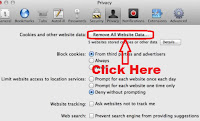 how to delete cookies in safari mac