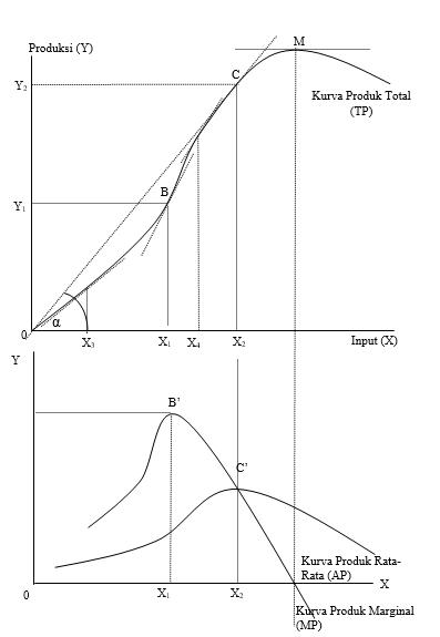 Hubungan Antara Produk Total, Produk Rata-Rata dan Produk Marginal