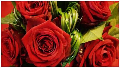 bouquet-roses-rouges