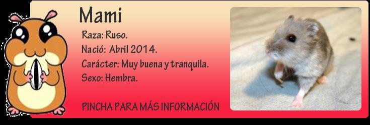 http://almaexoticos.blogspot.com.es/2014/09/mami-hamstercita-sacada-de-la-perrera.html