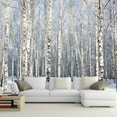tapet björk vinter fototapet vinterlandskap snö trädstammar björkstammar