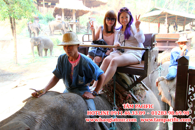 Du Lịch Thái Lan Trong Tầm Tay - Phần 5 - Những điều bạn nên làm ở Thái Lan