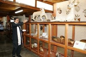 Museo de Historia Natural Víctor Baca Aguinaga